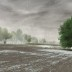 Der Regen bildet Pfützen auf dem Feld?