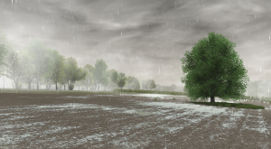 cattle_and_crops_muddy_rain