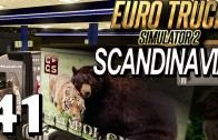 ETS2 SCANDINAVIA #41 Simulatorenmarkt im Flow Euro Truck Simulator 2 DLC deutsch