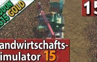 LS15 ADDON Landwirtschafts Simulator 15 GOLD #15 HACKSCHNITZEL ERLÖSE PlayTest SPECIAL deutsch HD