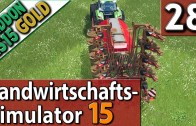 LS15-GOLD-28-FORST-UND-PLANUNG-60-FPS-deutsch-attachment