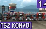 ETS2 Multiplayer KONVOI Multicam #14 Geburtstagsständchen LIVE Das 1k Abo Special deutsch HD