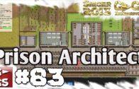 Prison Architect #83 Rasanter Zellausbau Alpha 17 Gefängnis Simulator Manager deutsch HD Lets Play