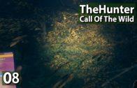 Nachsuche und viele Sichtungen ► The Hunter Call of The Wild #8