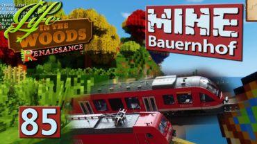 MINE Bauernhof | Keine Modellbahn im Bau? ► #85 MINECRAFT Life in The Woods deutsch